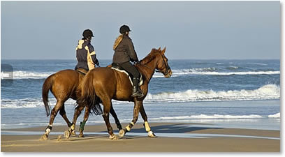 horseback riding on beach at seabrook